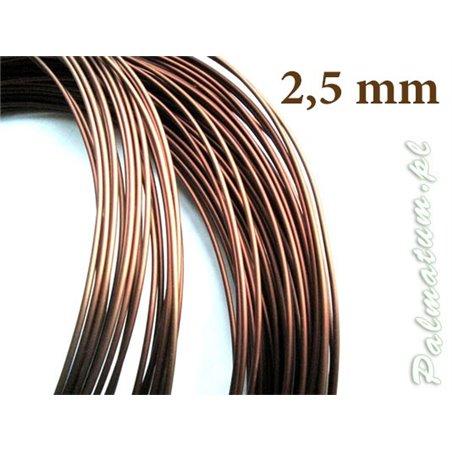 Shirasawa's Maple prebonsai