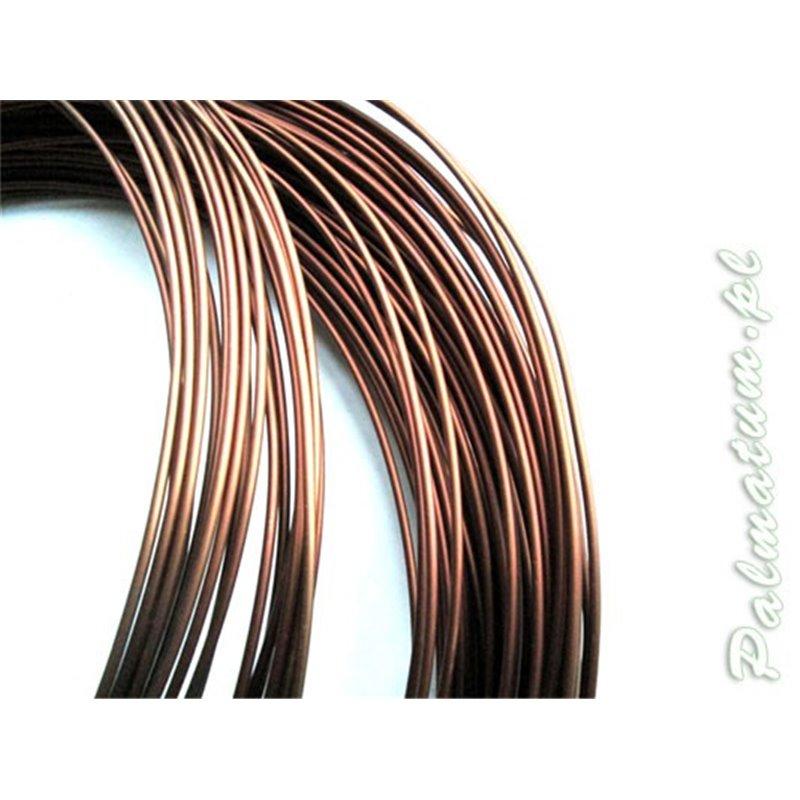 Scots pine twig