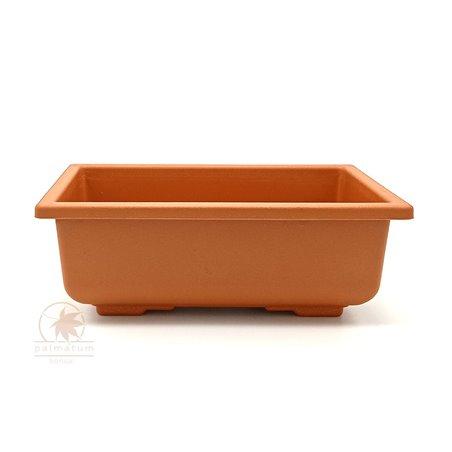 klon francuski - liść