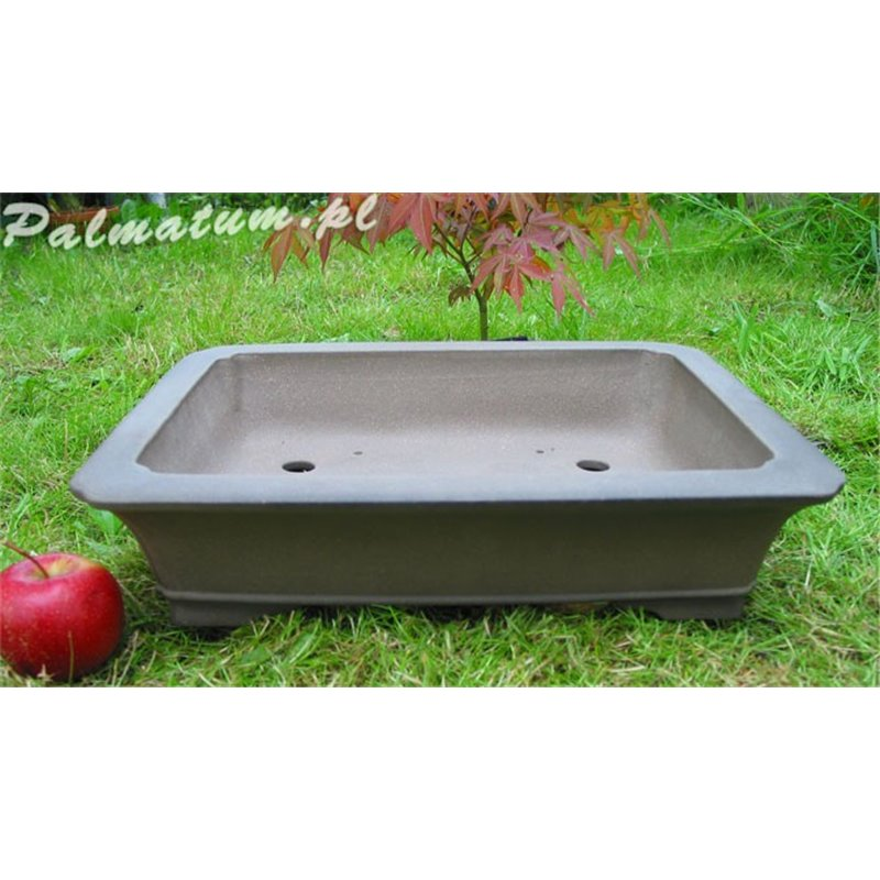 Rectangular bonsai pot