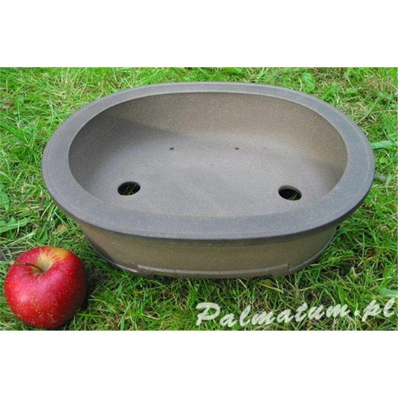 morwa czarna - owoc