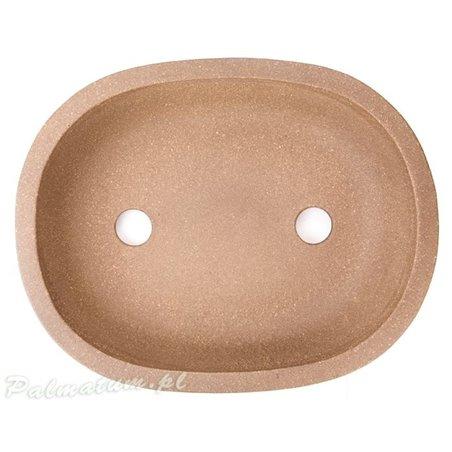 Klon palmowy prebonsai