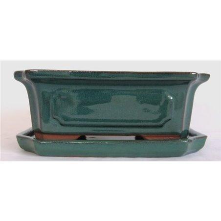 Koyama's spruce