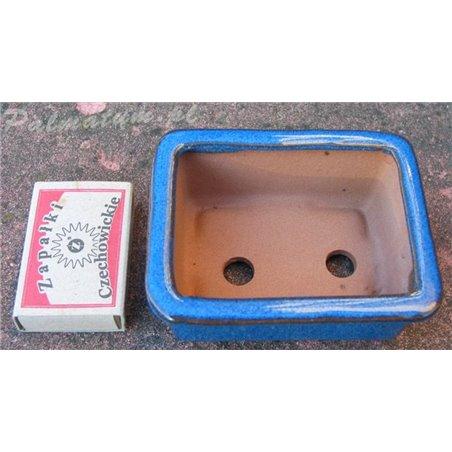 Wintersweet (seeds)