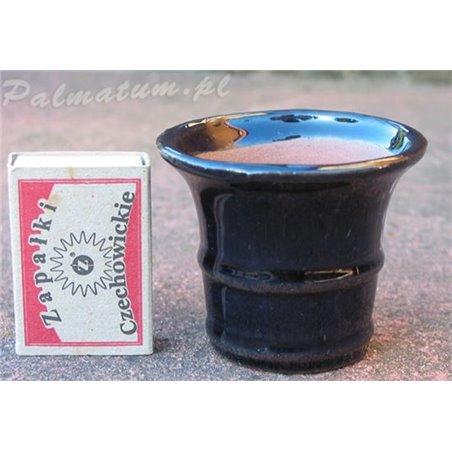 Garden bonsai display